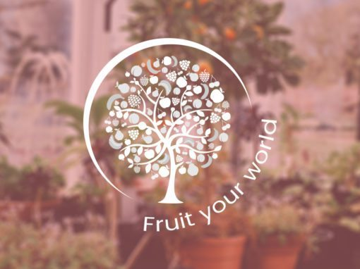 Fruit Your World